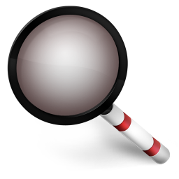 256x256px size png icon of Magnify Red