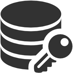 256x256px size png icon of Data Data encryption