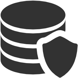 256x256px size png icon of Data Data protection