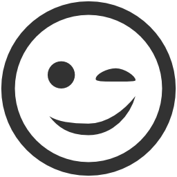 256x256px size png icon of Emoticons Wink