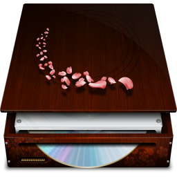 256x256px size png icon of Hardware External DVD