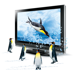 256x256px size png icon of 3D Penguins