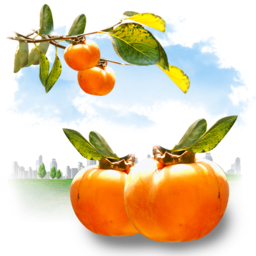 256x256px size png icon of Fruits Persimmon
