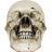 48x48px size png icon of crystalskull 1
