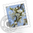 48x48px size png icon of Blooming Cherries