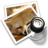 48x48px size png icon of preview14