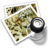 48x48px size png icon of preview16