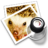48x48px size png icon of preview4