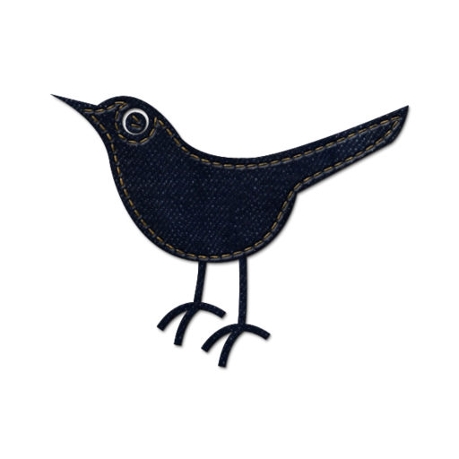 512x512px size png icon of twitter bird 2