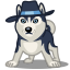 64x64px size png icon of dog haski