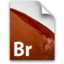 64x64px size png icon of BR GenericFile