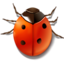 64x64px size png icon of bug