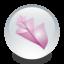 64x64px size png icon of Adobe Bridge