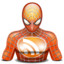 64x64px size png icon of rss spiderman