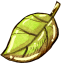64x64px size png icon of Ele Forest