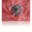 64x64px size png icon of Albania