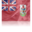 64x64px size png icon of Bermuda