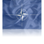 64x64px size png icon of NATO