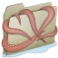 64x64px size png icon of Lightbrown Kraken