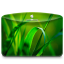 64x64px size png icon of Folder Nature Leave