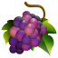 64x64px size png icon of Grapes