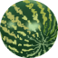 64x64px size png icon of Water melon