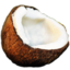 64x64px size png icon of coconut