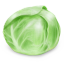 64x64px size png icon of Cabbage