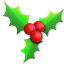 64x64px size png icon of Holly light