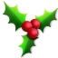 64x64px size png icon of Holly