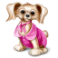 64x64px size png icon of Dog