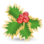 64x64px size png icon of Mistletoe