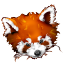 64x64px size png icon of Firefox panda red