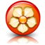 64x64px size png icon of Magnolia