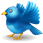 64x64px size png icon of twitter bird landing