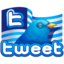 64x64px size png icon of twitter flag