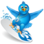 64x64px size png icon of twitter surf