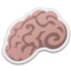 64x64px size png icon of Brain