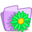 64x64px size png icon of folder flower green