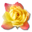 64x64px size png icon of Rose Yellow 2
