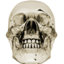 64x64px size png icon of crystalskull 1
