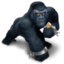 64x64px size png icon of Kong