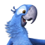 64x64px size png icon of Rio2 Blu