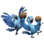 64x64px size png icon of Rio2 Kids