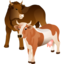 64x64px size png icon of Cattle
