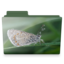 64x64px size png icon of butterfly folder