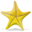64x64px size png icon of Marine star