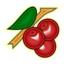 64x64px size png icon of Cherry