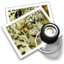 64x64px size png icon of preview16