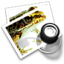 64x64px size png icon of preview9